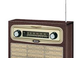 Radio Slottshagen