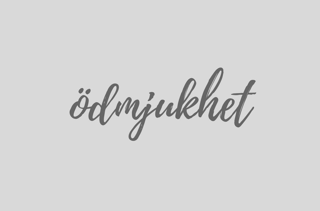 """Veckobrev 161127 – """"Ett ödmjukt Nytt Kyrkoår…"""""""