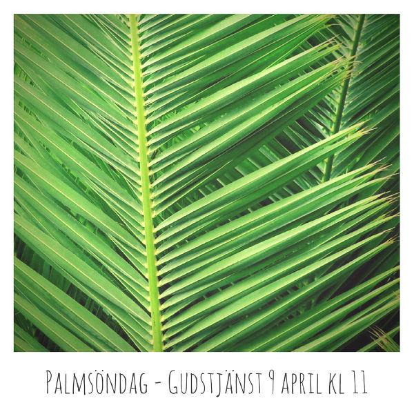 Palmsöndag – Gudstjänst 9 april kl 11