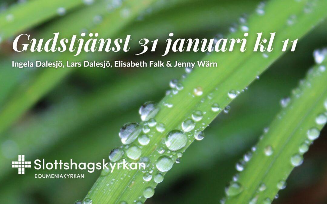 Gudstjänst – 31 januari kl 11